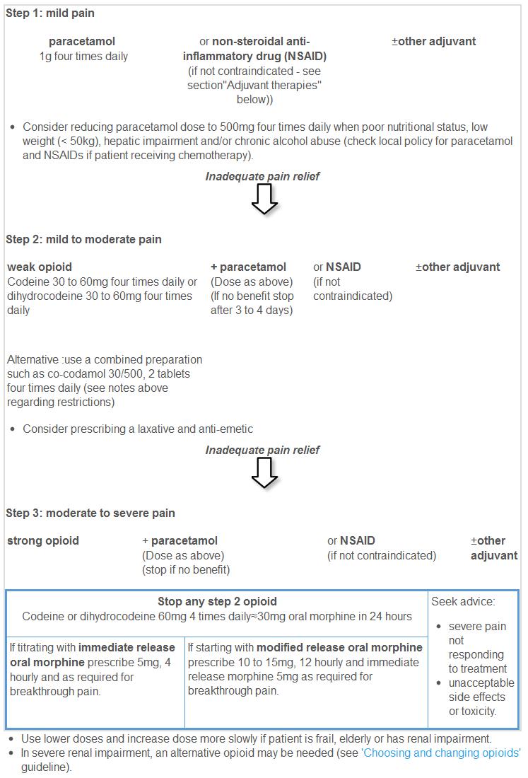 Scottish palliative care guidelines pain management management nvjuhfo Choice Image
